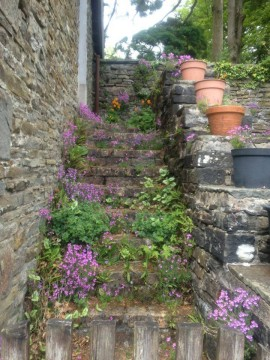 The Stairs to Nowhere at Swallow's Summer Dwelling Fairytale Cottage