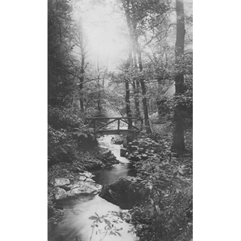 The River Clydach at Plas Farm circa. 1900 by The Lloyds of Plas Cilybebyll