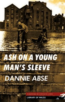 Ash on a Young Man's Sleeve by Danny Abse